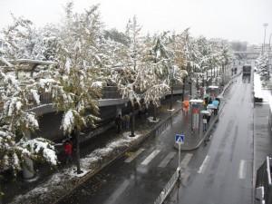 1-snow2