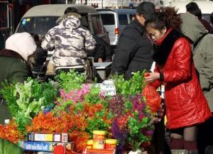 Plastväxter till salu i Beijing