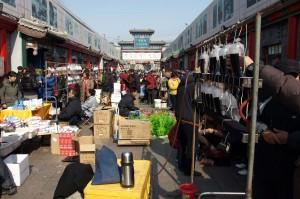 Stor husdjursmarknad i Beijing