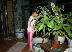 Hjälp med att vattna träden sent på kvällen