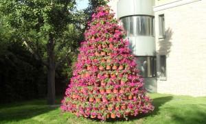Gran av blommor